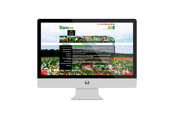 Diseño Web Wordpress